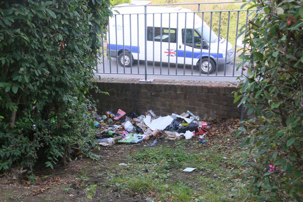 Accumulation of litter beneath bushes on Farley BBank