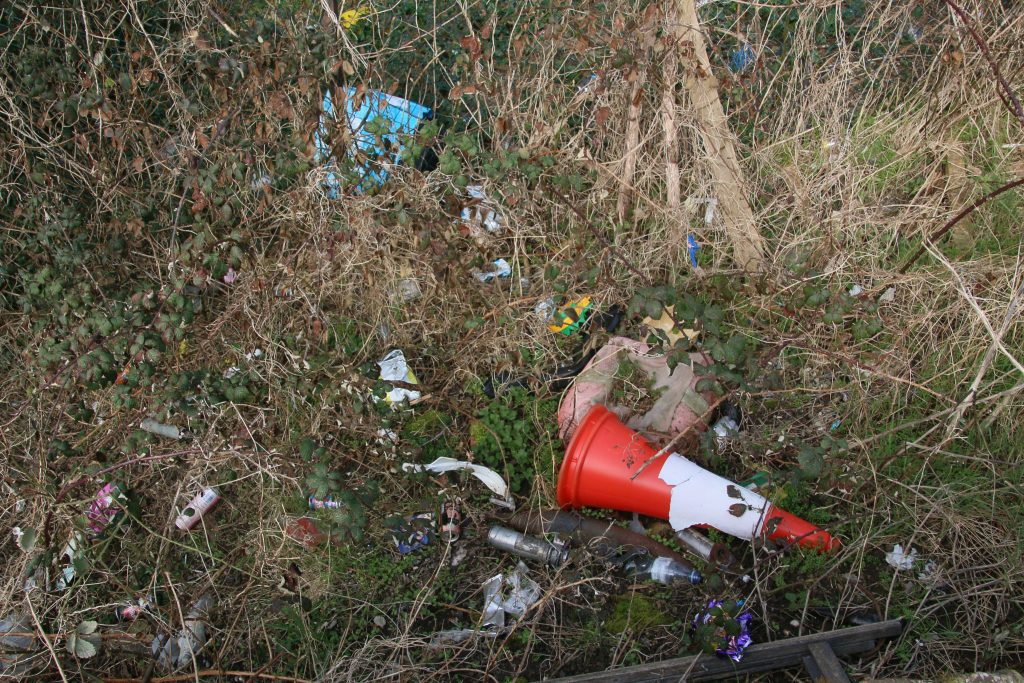 Litter and traffic cone in undergrowth