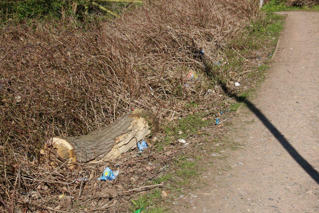 Litter along edge of footpath