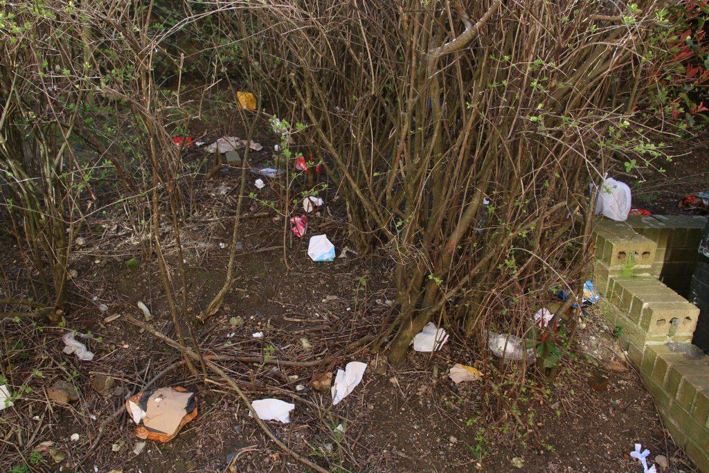 Litter at the base of shrubs