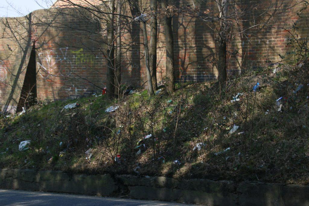 Litter in the bottom of shrubbery