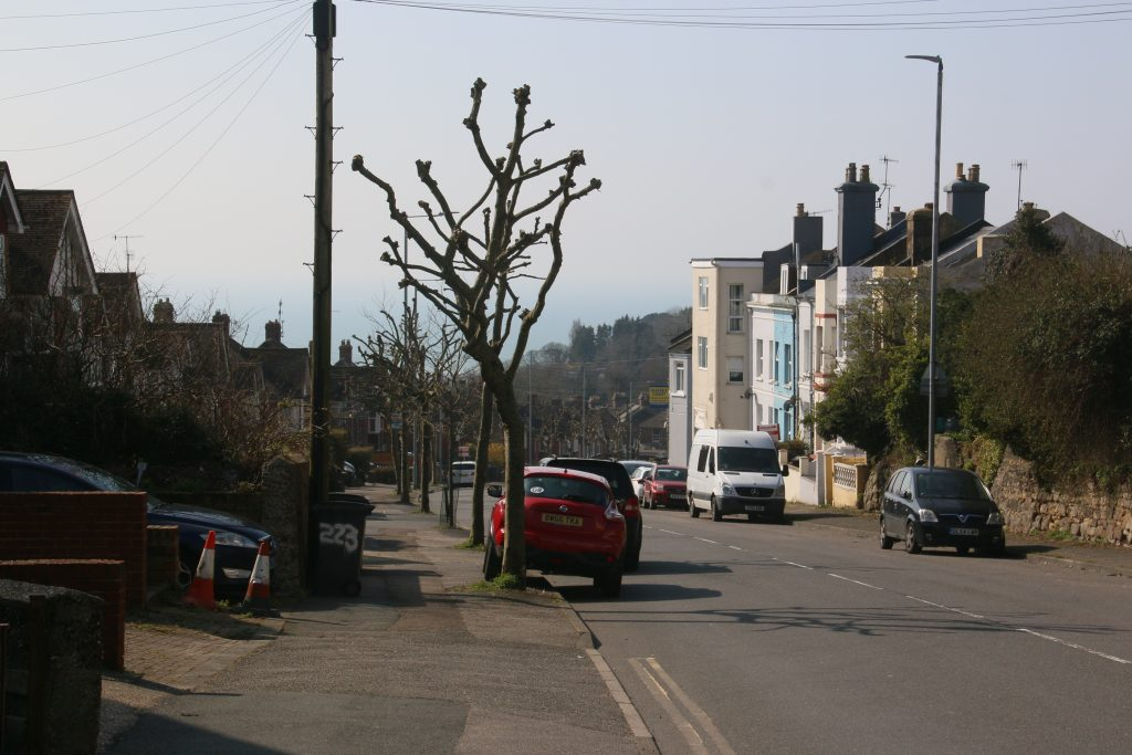 Old London Road - pollarded trees and houses, view out to sea.