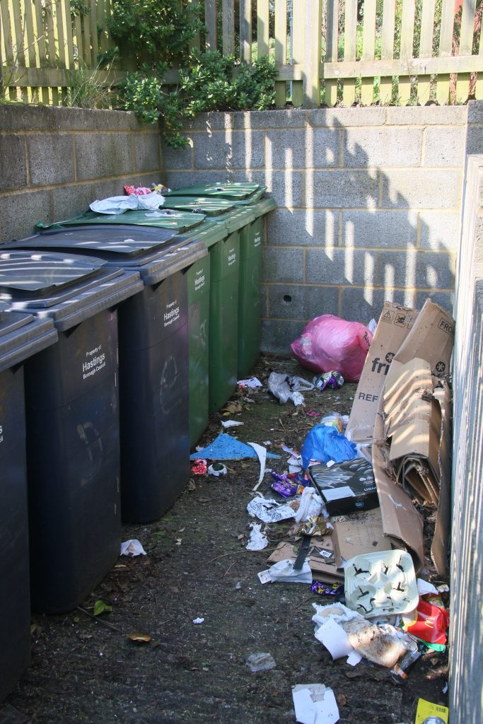 Rubbish and flytippng in enclosed area with wheelie bins